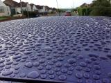 Surface of car after 2.5 weeks and still beading